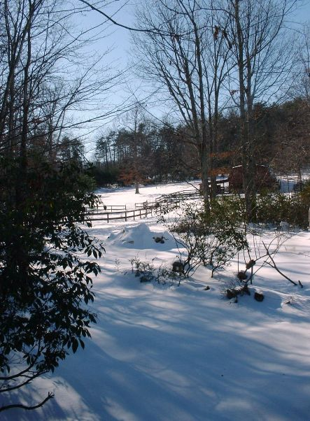 snow mountains laurel trees rododendrons riding rink winter scene North Carolina